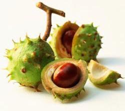 Remedii naturiste pentru tratarea varicelor