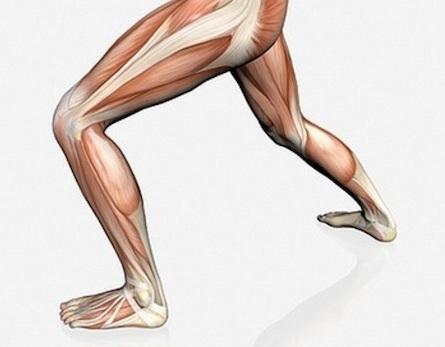 6 metode prin care poti avea mai multa forta in picioare
