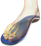 WireframeFootSantanaOrth