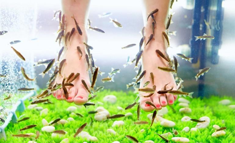 Cum trataţi cele mai frecvente afecţiuni ale picioarelor?