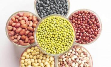 10 surse de proteine în regimul vegetarian